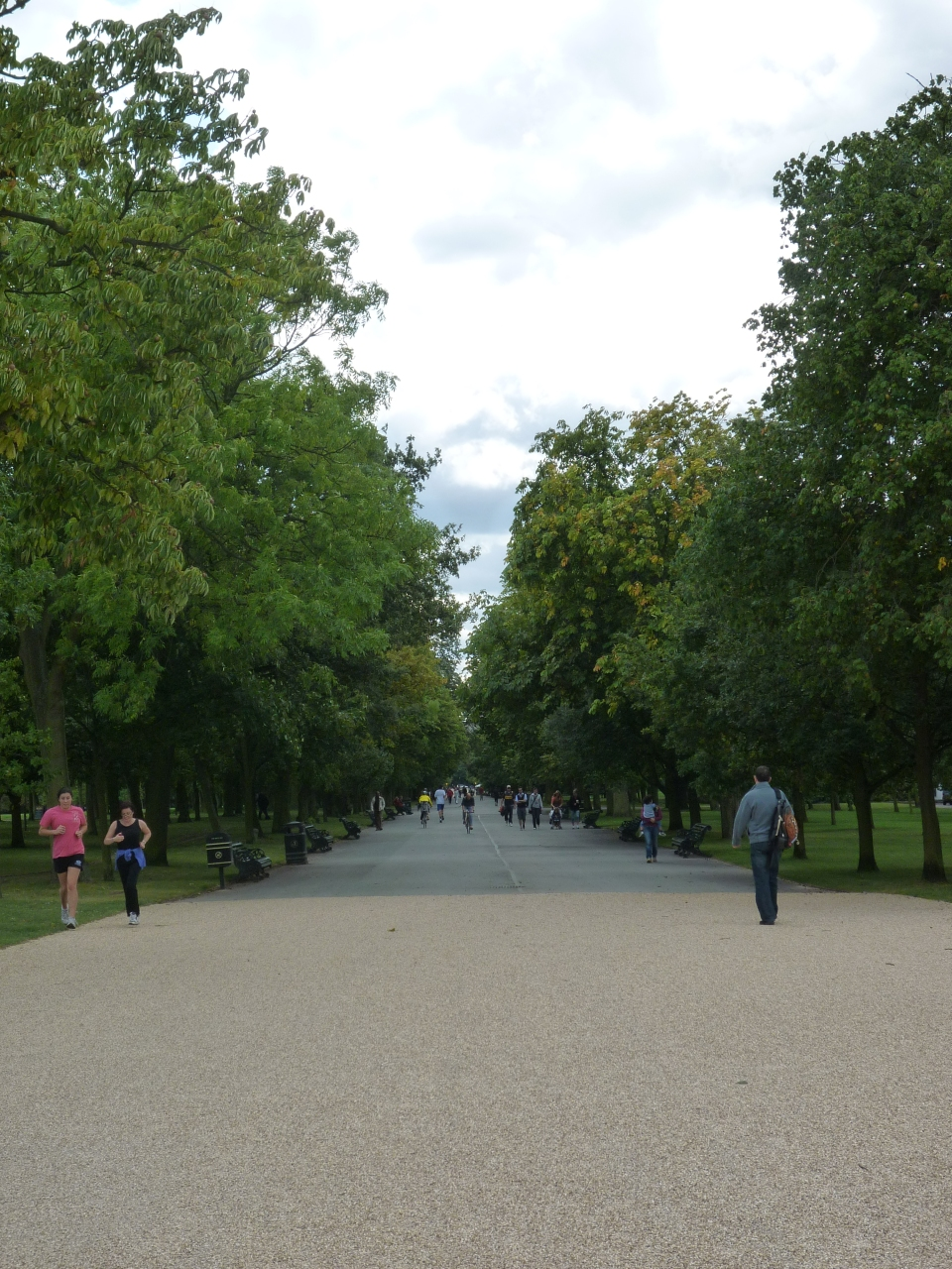 tree lined avenue in Regents Park