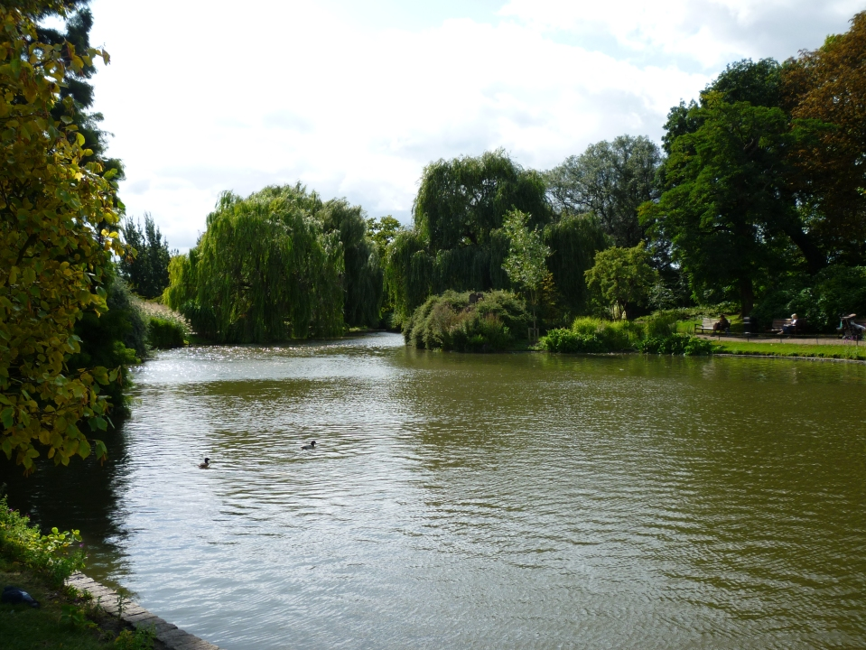 view of a pond